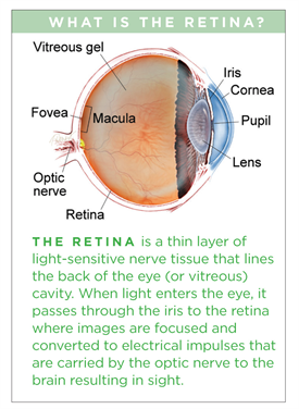Epiretinal Membranes The American Society Of Retina Specialists