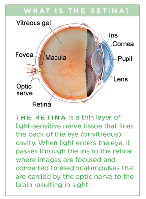 Macular Hole The American Society Of Retina Specialists